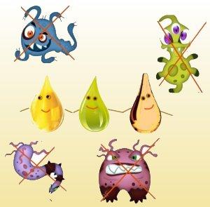 Мукус полезен в борьбе с бактериями
